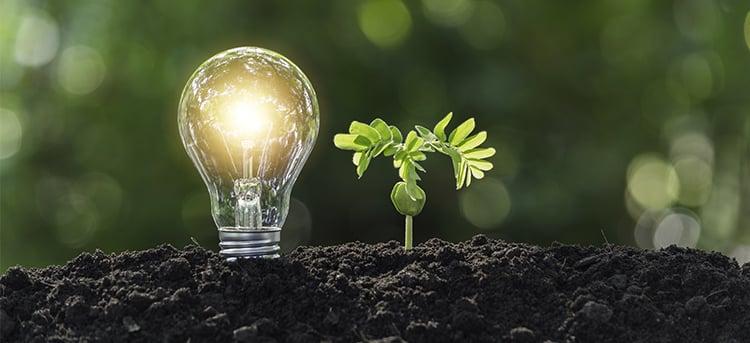 LED: Uso y ahorro en México
